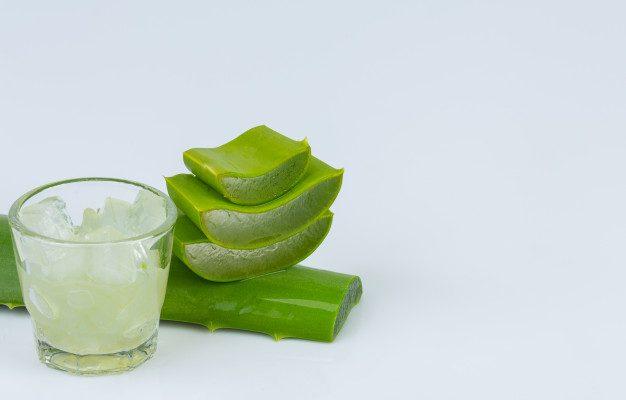 À quoi sert le gel d'aloe vera ?